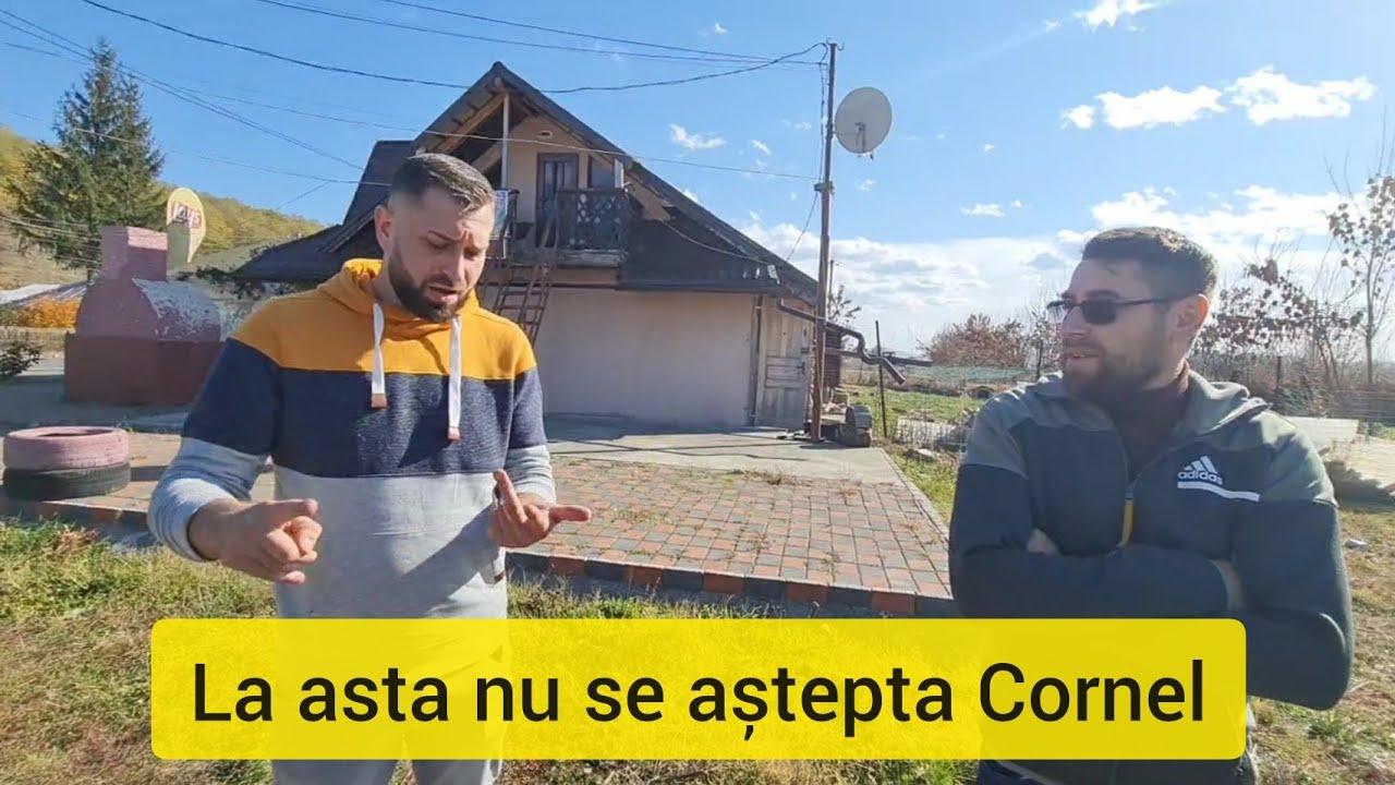 Download SURPRIZA PENTRU CORNEL LA CASUTA DIN PADURE ⚡Ionut Ghita