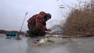 Первый СУДАК на жерлицы Бешеный ОКУНЬ 3 ДНЯ в деревне Зимняя рыбалка со льда 2021
