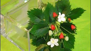 ЗЕМЛЯНИКА из ПОЛИМЕРНОЙ ГЛИНЫ. Делаем ягодки, цветочки и листья. ОЧЕНЬ ПРОСТО! Для начинающих