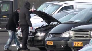 Autos für den Export nach Polen, Serbien, Litauen, Bulgarien, aus Deutschland und den Niederlanden