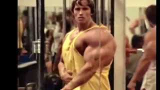 Repeat youtube video Arnold Schwarzenegger and The ROCK   Bodybuilding