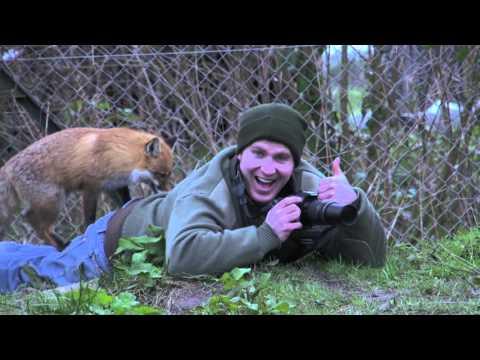 MA Wildlife Filmmaking