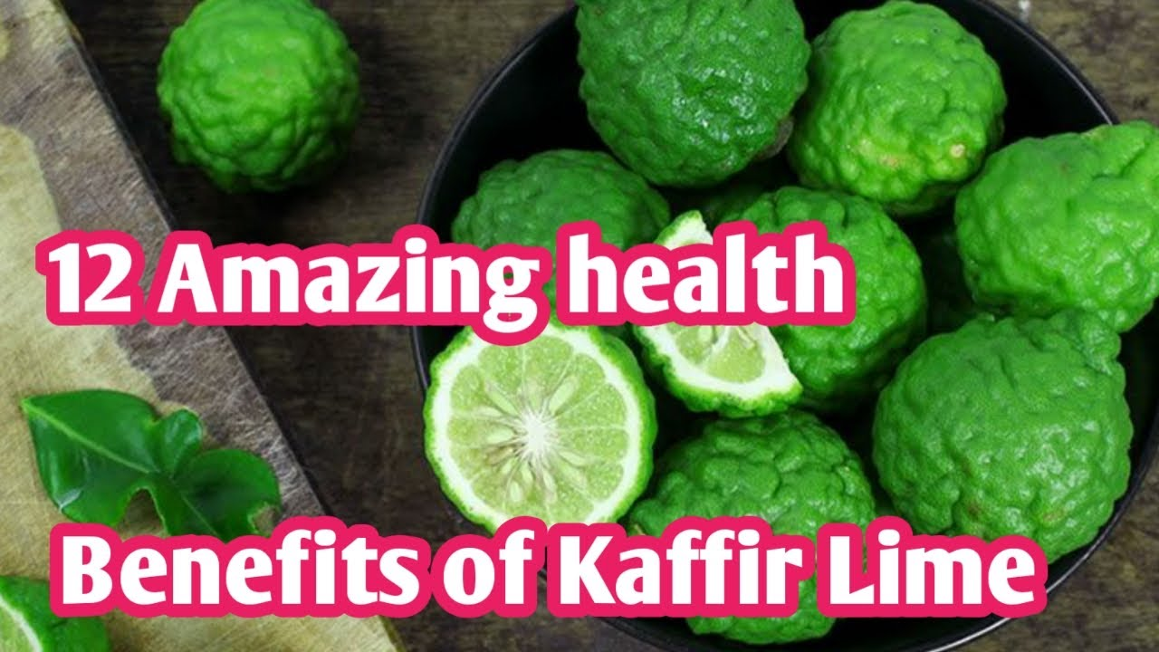 12 health benefits of kaffir lime which will surprise you   sky world
