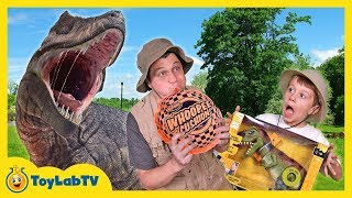 Funny Baby Unboxing and Review Dinosaur Toys, Tayo The Little Bus