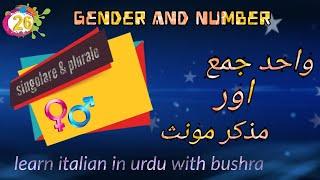 26. Singolare plurale maschile e femminile