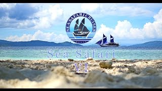 Sea Safari Cruises Boat VI, Indonesia Mp3