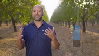 AgroBites- Effective Rainfall | Netafim