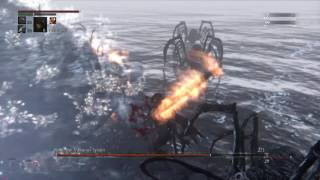 Bloodborne - Rom, The Vacuous Spider
