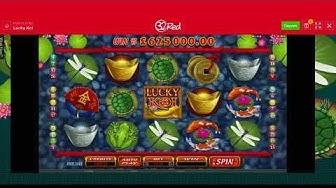 Lucky Koi Slot Review