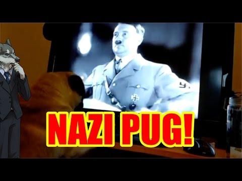 COUNTDANKULA CENSORSHIP INJUSTICE  M8 Yer Dugs A Nazi