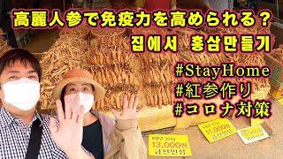코로나면역력키우기 홍삼만들기【免疫作り】韓国の京東市場で高…