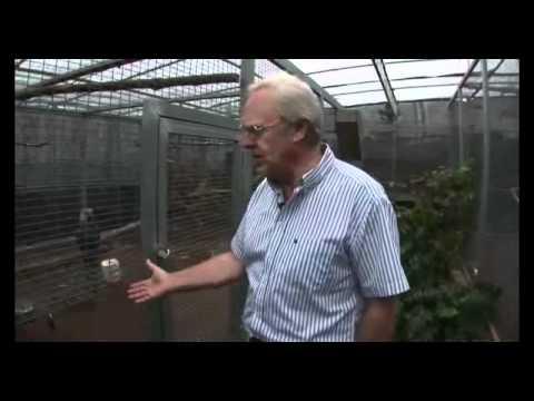 Spix's Macaw Breeding Center