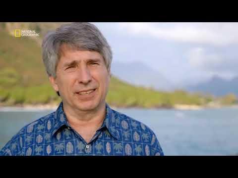 Okyanus Çekilince   İkinci Dünya Savaşı Kalıntıları  Belgesel