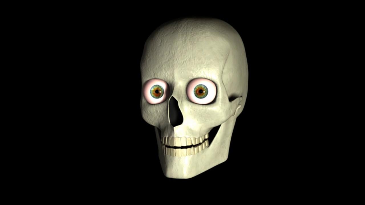 Cráneo 3D Max - YouTube