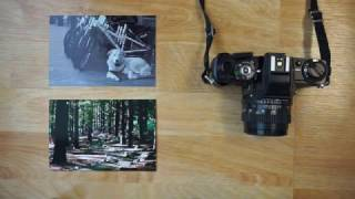 How to buy 35mm Film Camera's DIRT CHEAP!