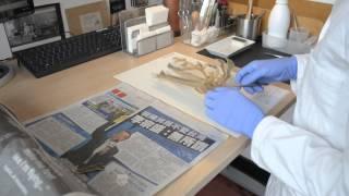 Mounting Herbarium specimens