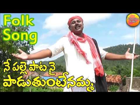 Palle Pata Nai Paduthuntenamma | Private Folk Songs | Telangana Folk Songs | Folk Songs Telugu