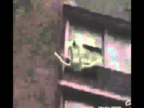 kermit commiting suicide vine youtube