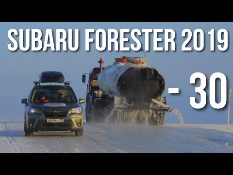 Subaru Forester 2019. ОТЗЫВЫ зимой