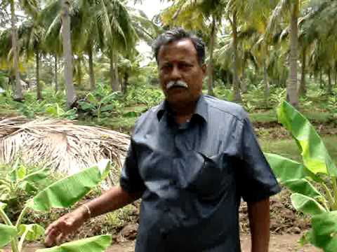 Organic Farming by Sudhir,Bangalore