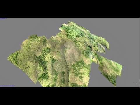 3D Forest Mapping