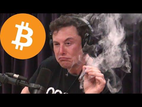 Elon Musk On Bitcoin