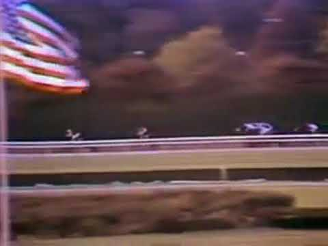 Seattle Slew -- 1976 Champagne Stakes