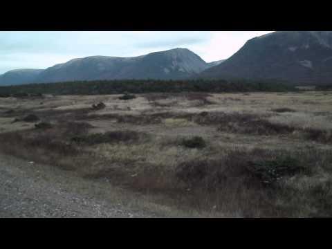 First Impressions of Newfoundland!