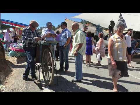 Na feira da Espinheira 2016 08