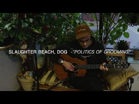 Slaughter Beach, Dog - Politics of Grooming | Audiotree Far Out