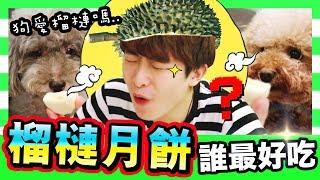 【😛榴槤忘返!】最高評分的「榴槤冰皮月餅」是??😋狗狗愛榴槤味道嗎…?(中字)