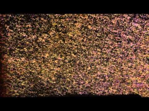 video-2011-02-15-18-14-55