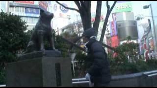 MOVIE / MCY@マッチャ ◇セクシーパンサー企画 -2010年3月14日-渋谷O-WEST/ セクシーカーニバル20回記念大会/上映作品 □出演/セクシーパン...