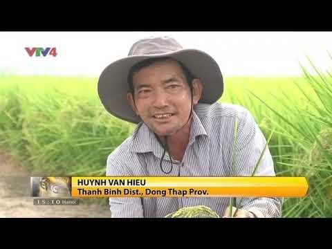 VTV News 15h - 15/03/2018