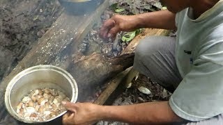 Catching, Cooking and Eating Coconut Worms and Larvae in Amazon Forest. Best of Peru Village Food