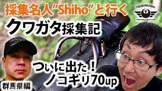 クワガタ採集名人Shihoさんとクワガタ・カブトムシの採集に行きました。...