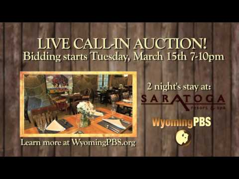 Saratoga Hotsprings Auction