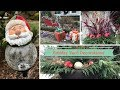 Beautiful Christmas Holiday Yard Decorations 🎄
