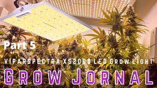 Grow Jornal. Part 5. «ViparSpectra», «XS Series», «LED Grow Light». XS2000