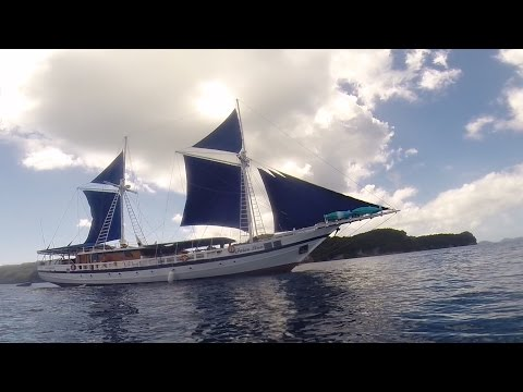 The Siren - Liveaboard in Palau