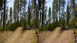 Beacon Hill Downhill Mountain Bike Race Spokane, WA 3D YT3D