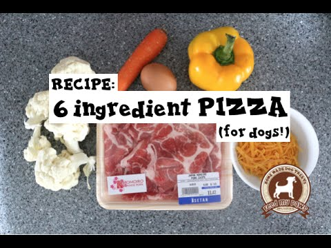feedmypaws---recipe:-pizza-for-dogs!