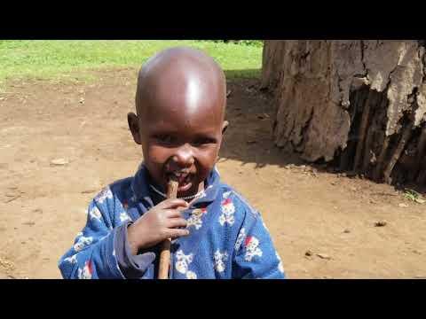 IVHQ TANZANIA  AFRICA  - Volunteer Trip