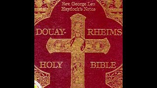 The New Testament (Part 1 Oḟ 3) - Douay–Rheims Bible - Audiobook
