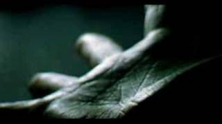 "Video for the song ""To Be Continued"" by Pia Påltoft. Video directed..."