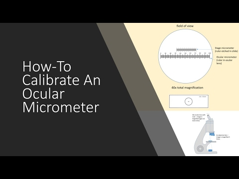 Calibration of Microscopic Ocular Micrometer