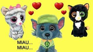Juguetes paw patrol español: bebes ¿Rocky vivía con gatitos?.Patrulla canina nuevo capitulo de 2018