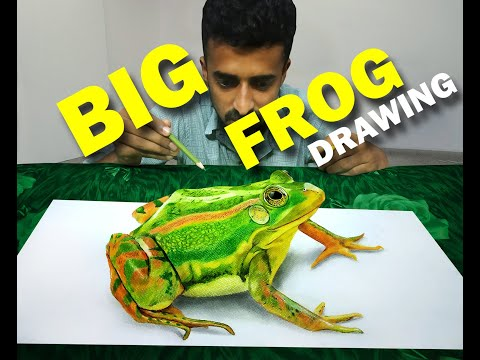 Frog 3d Art (Anamorphic Art) by Riyas Ardis, How to draw a 3d drawing.