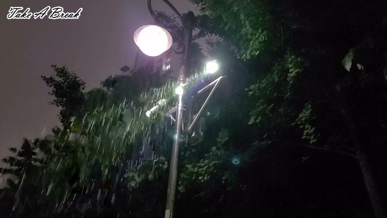 가로등 아래 기다림과 함께한 거센 빗소리 ASMR   잠 잘오는 소리 백색소음   불면증 완화 자장가    Rain Sound under Street Lamp