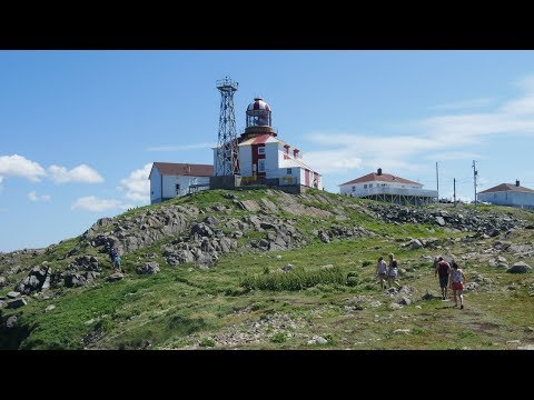 What to do in Bonavista Newfoundland